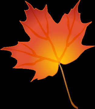 Leaves clipart autumn leaves Transparent Autumn leaf clip clipart