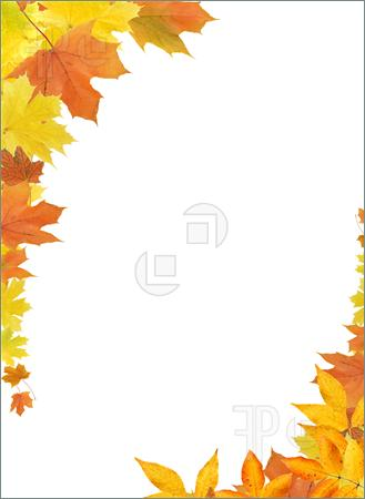 Leaves clipart boarder Art border Clip collection Autumn