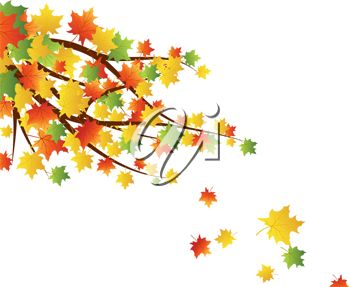 Branch clipart fall leaves Falling collection best Autumn leaves