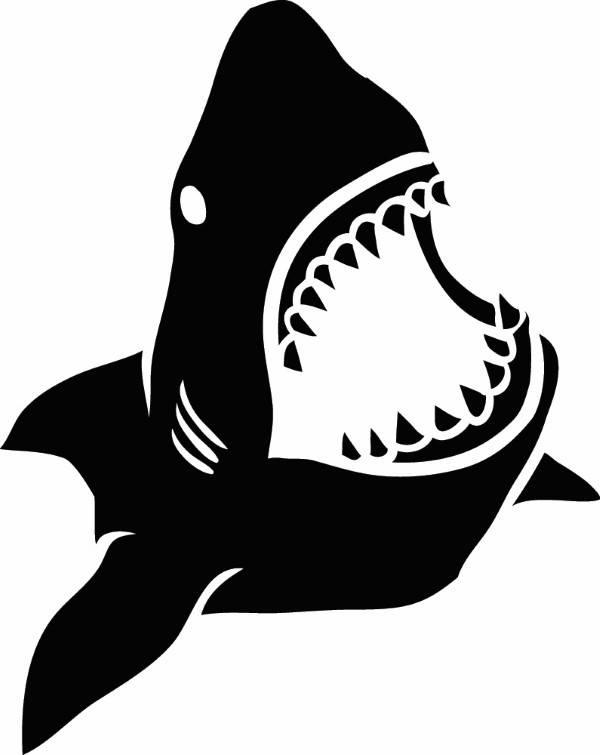 Shark clipart jaws #2