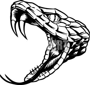 Black Mamba clipart cobra head 46 about on Clip Snake