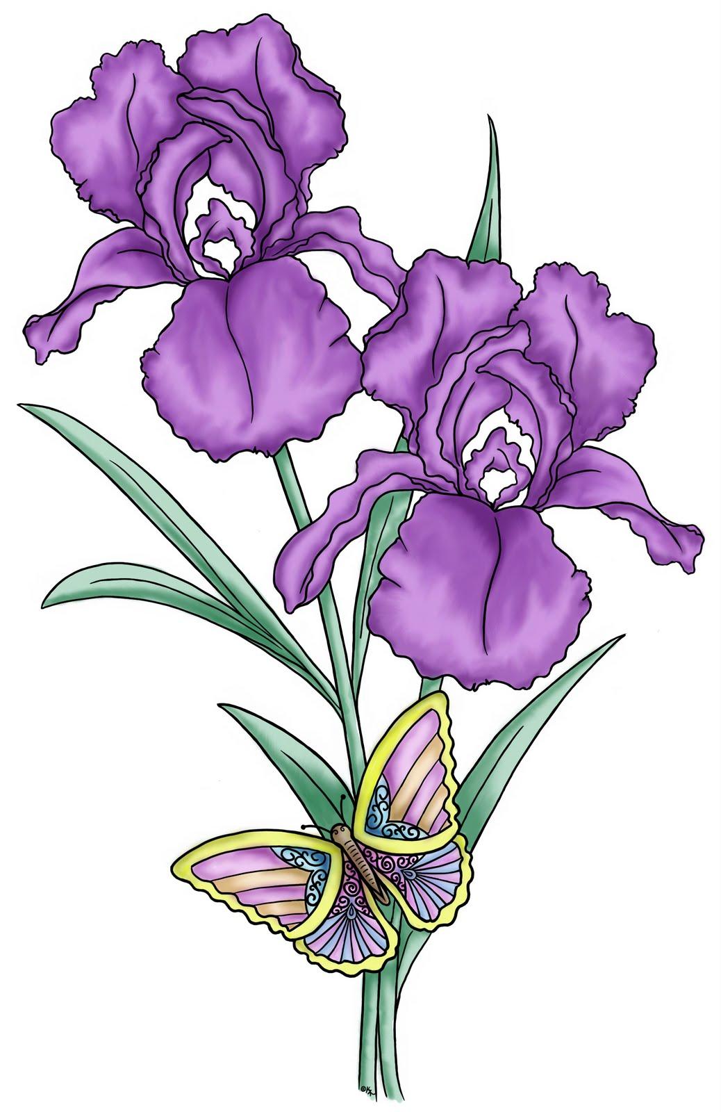 Iris clipart drawn Clip Free Iris Flower Clipart