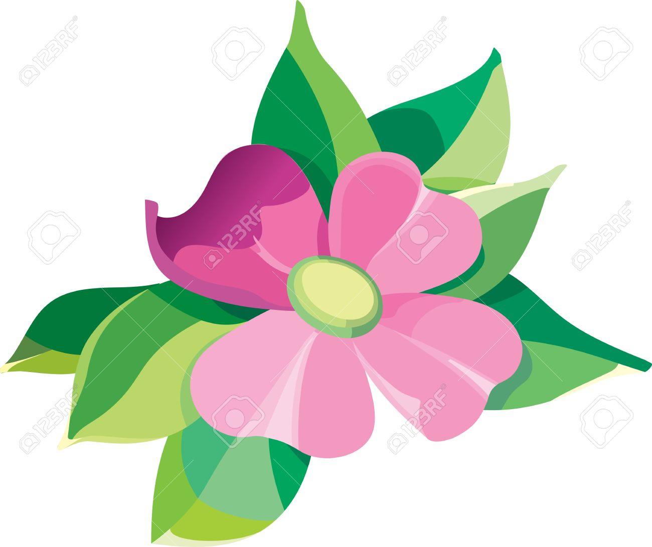 Petal clipart flower leaves Flower Clipart 66 art flower