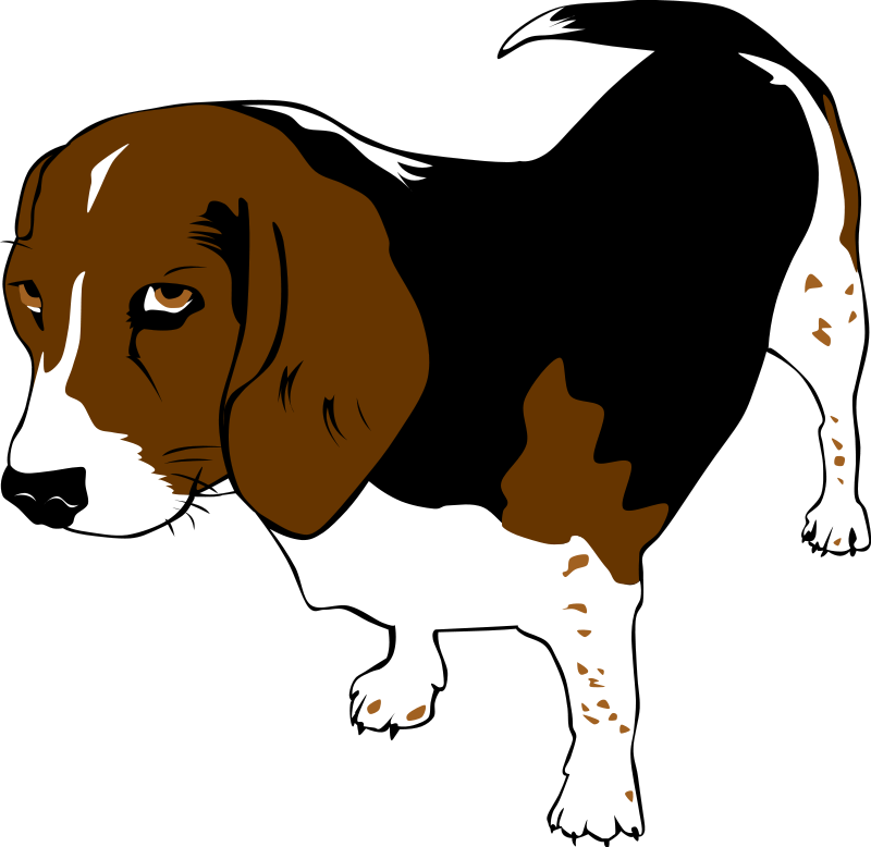 Pet clipart together Clip Download Animals art