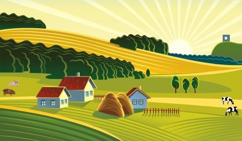 Farmland clipart #2