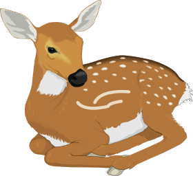 Fawn clipart Clip Deer Art Spots Download