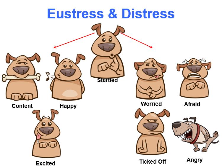 Fear clipart distress  Distress – Coping Understanding