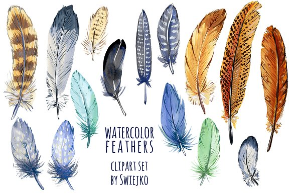 Feather clipart Illustrations feather Watercolor feather clipart
