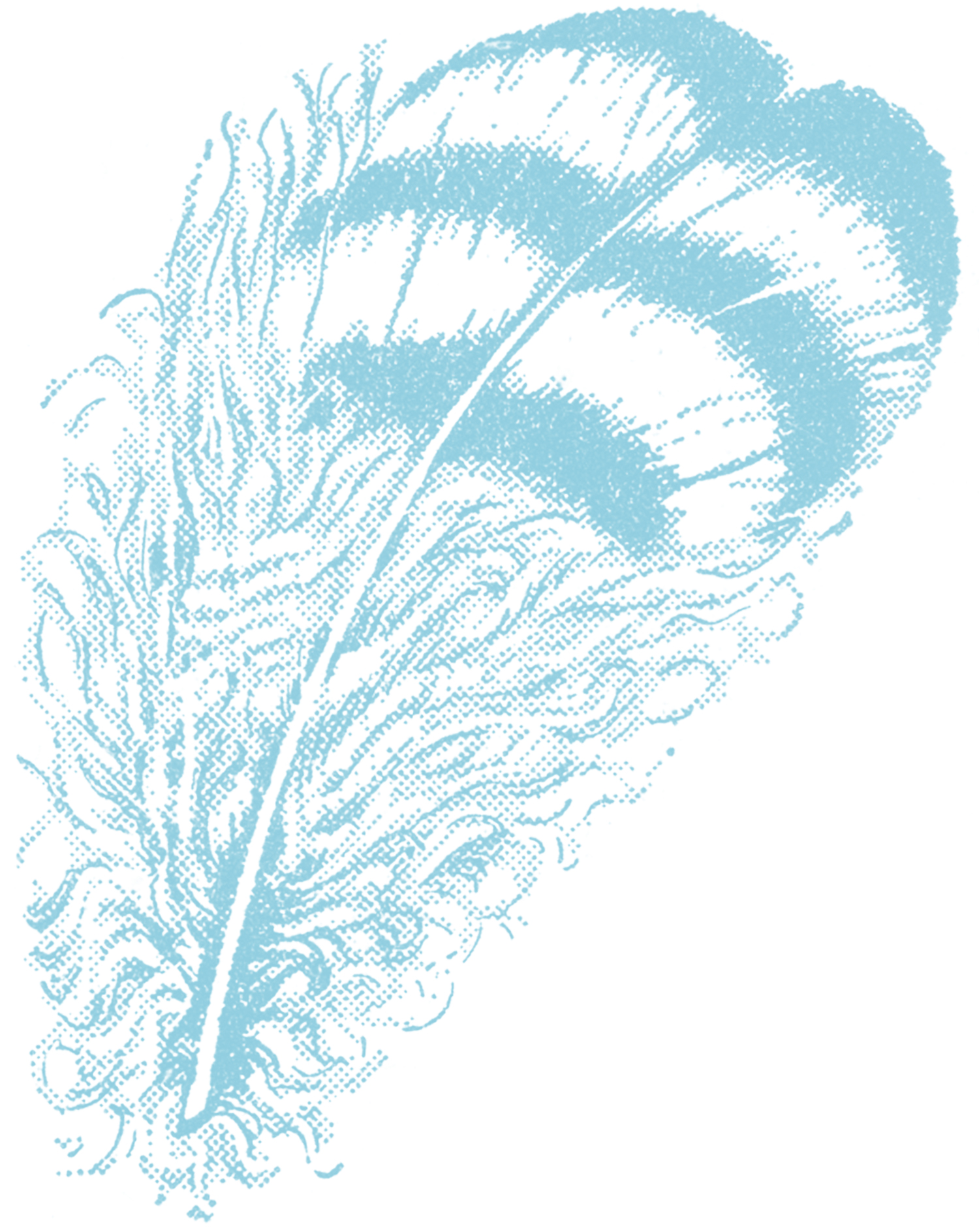 Feather clipart The Feather Vintage Feather Clip