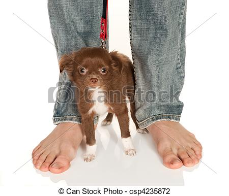Feet clipart big and small Doggy feet feet Stock csp4235872