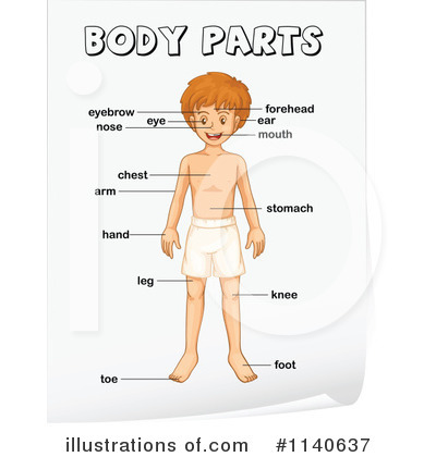 Feet clipart body part Parts Royalty Free Clipart Body