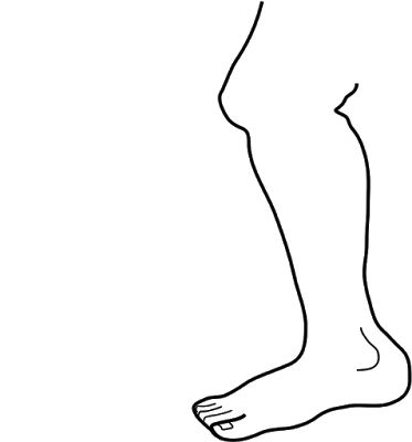 Legz clipart human leg Drawing Legs images best 352
