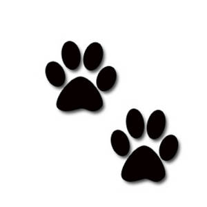 Paw clipart puppy Free Clip on Clip Art