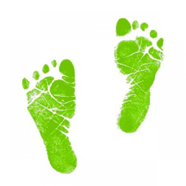Feet clipart color design Cliparts Green Photos Cliparts Baby