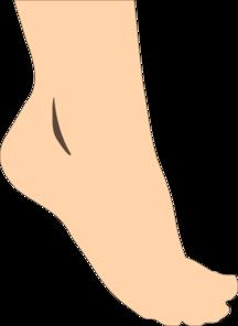 Feet clipart transparent Clip Foot Art foot%20clipart Panda