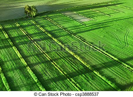 Feilds clipart countryside Green of csp3888537 land Agricultural