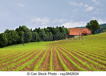 Feilds clipart agriculture field #2