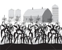 Feilds clipart corn field Art field corn Google Search