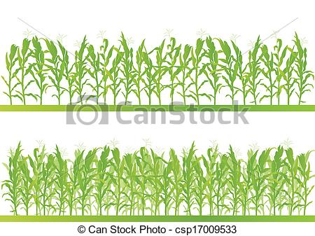 Cornfield clipart rice crop Of detailed csp17009533 vector illustration