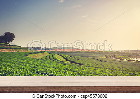 Feilds clipart empty farm Montage and for csp45578602 field