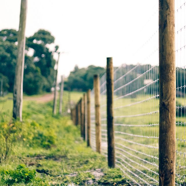 Feilds clipart fenced yard #7