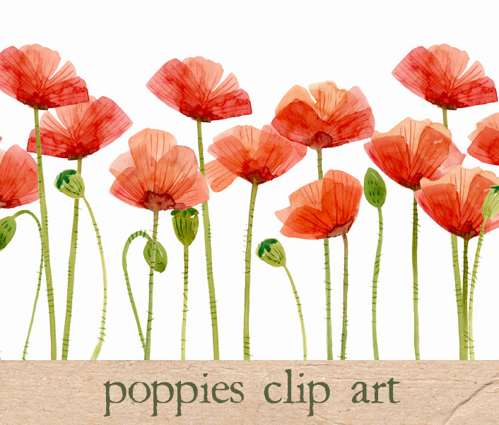 Red Flower clipart poppy flower #15