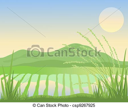 Feilds clipart illustration An of paddy paddy Vector