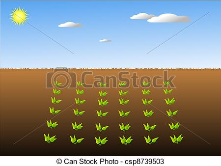 Feilds clipart illustration Fields of in Crops Drawings