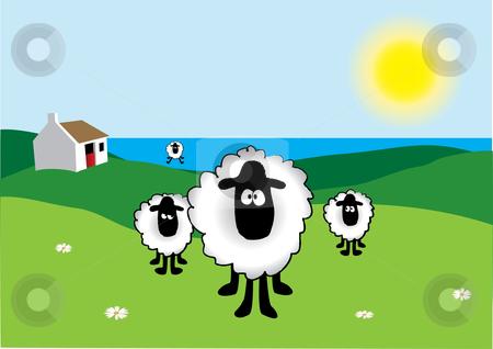 Feilds clipart sheep Sheep Sheep vector stock