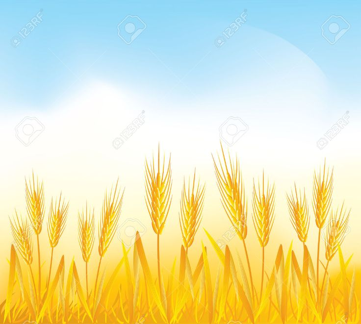 Feilds clipart wheat field Field 15 Cliparts Pinterest images