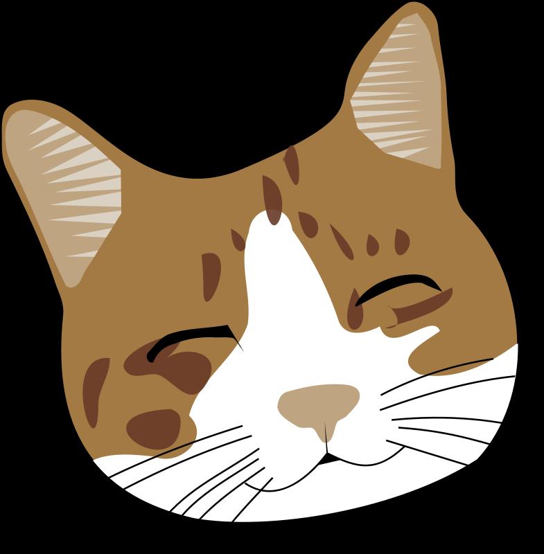Orange clipart cat face  Cat cliparts: on ClipArt