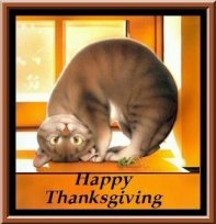 Thanksgiving clipart cat Holidays Cat Clipart Thanksgiving Free