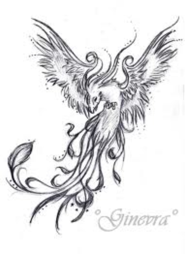 Fenix clipart coat arm Sleeve<3 TATTOO IN PHOENIX PHOENIX