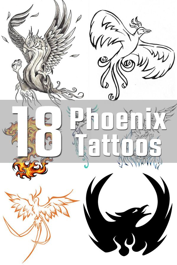 Fenix clipart hans Is Phoenix The Designs on