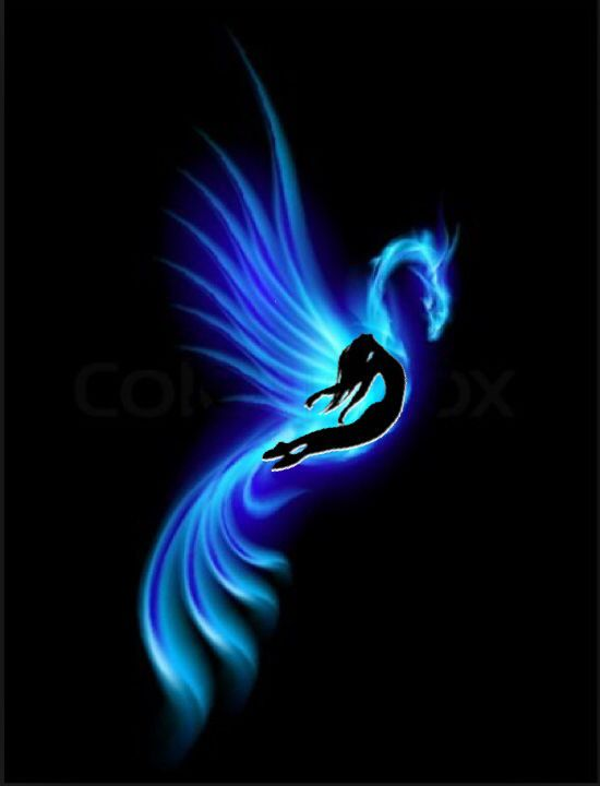 Fenix clipart purple Tattoo Fenix Phoenix 25+ on
