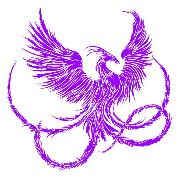Fenix clipart purple By 7 Phoenix Pinterest com