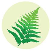 Fern clipart Free leaf Fern · Fern