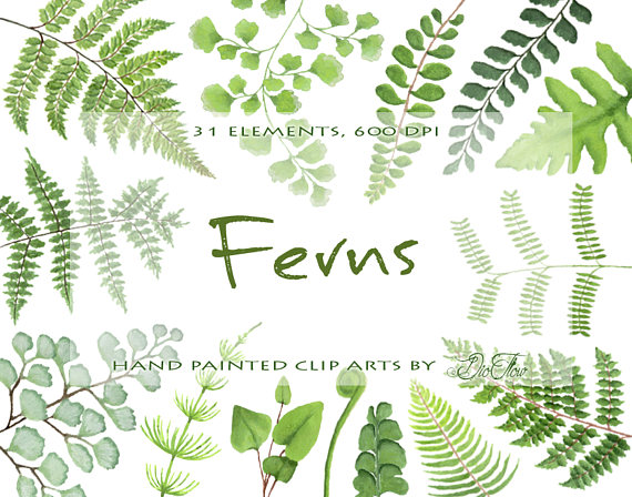Wood clipart green forest Woodland Clip Fern Leaves Leaf
