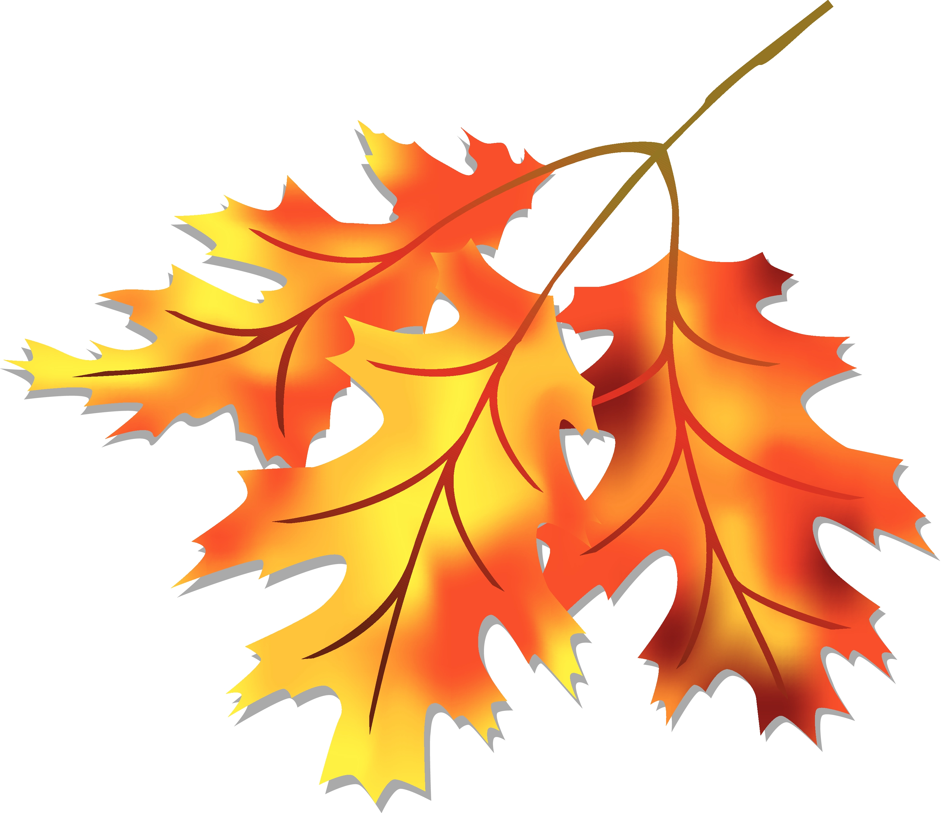 Leaves clipart autumn leaves Com leaves Falling Fall leaves