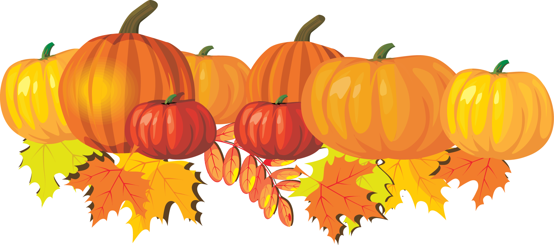Gourd clipart orange pumpkin Leaves and Clip  Pumpkins