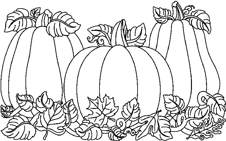 Harvest clipart black and white And black 3 fall banner