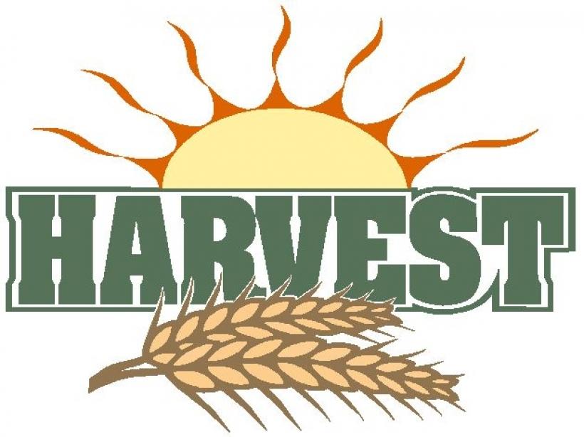 Gourd clipart harvest festival #5