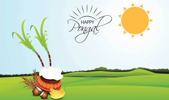 Festival clipart pongal festival All the to Pongal need