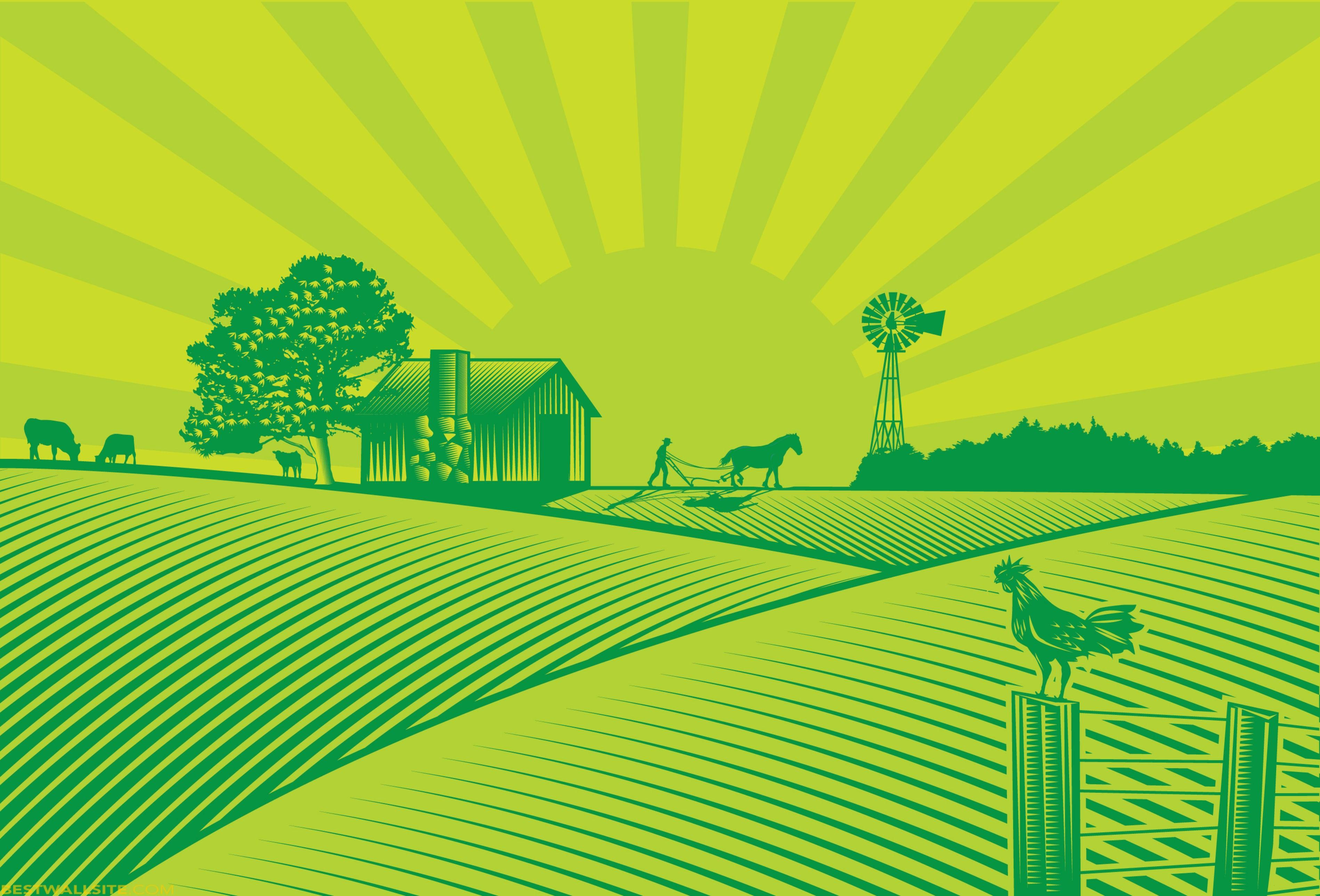Feilds clipart dairy farm Info Panda Fields Clip Clipart