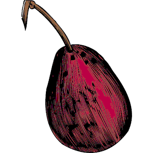 Fig clipart #9