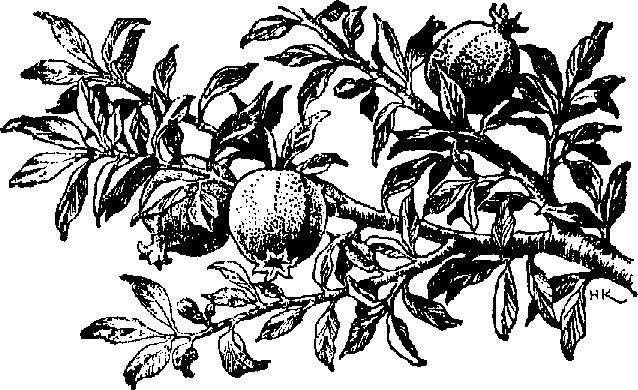 Barren clipart two tree Fig barren  Clipart the