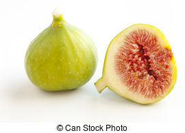 Fig clipart fresh Photo Figs Royalty Figs on