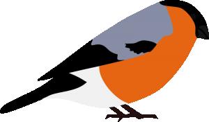 Finch clipart #10