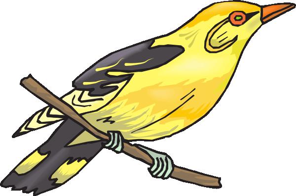 Finch clipart #12
