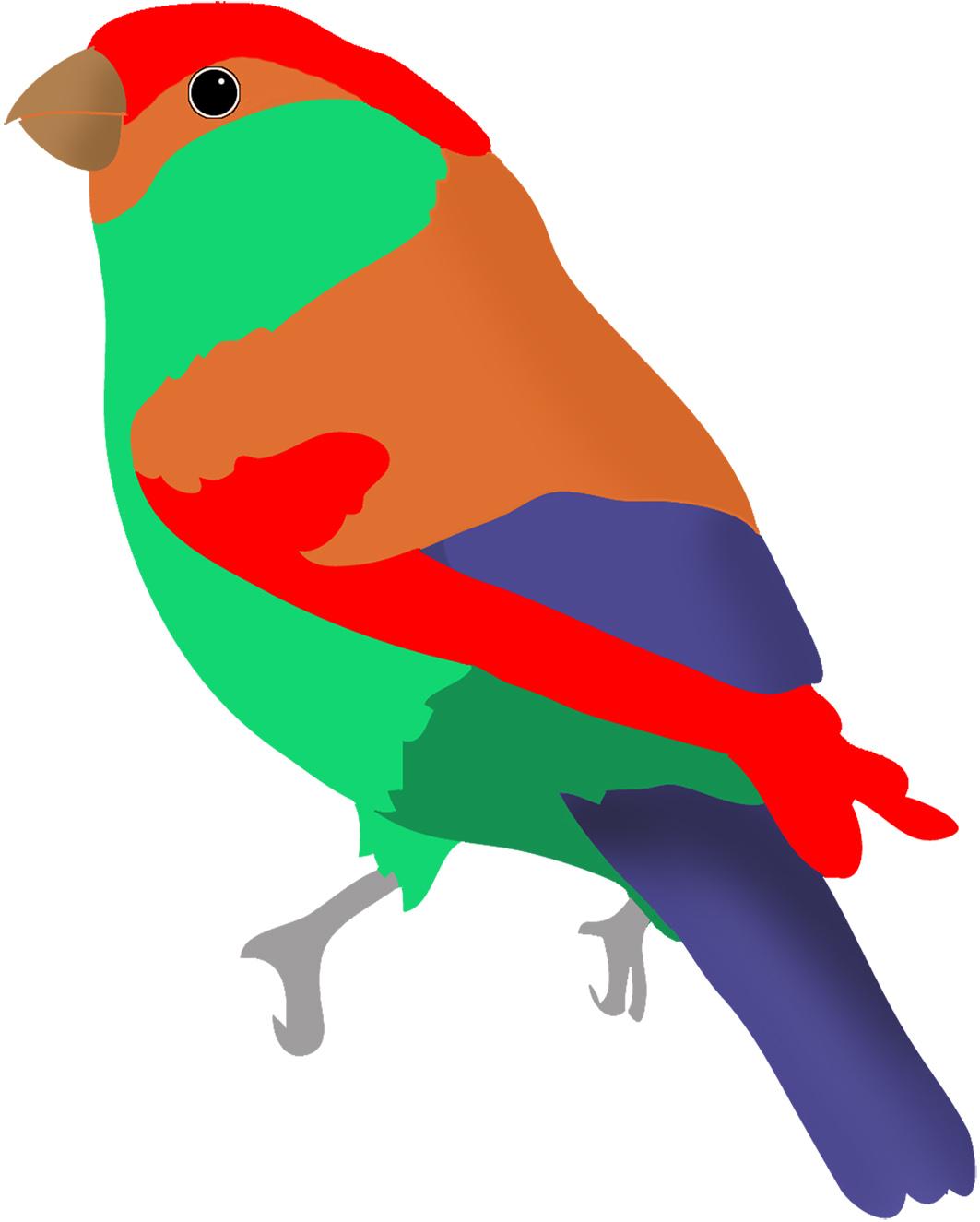 Bird clipart colored Redpoll blue green red bird